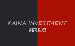 广东省凯纳投资管理有限公司