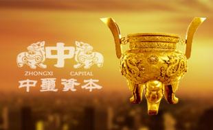 广东中玺创业投资有限公司